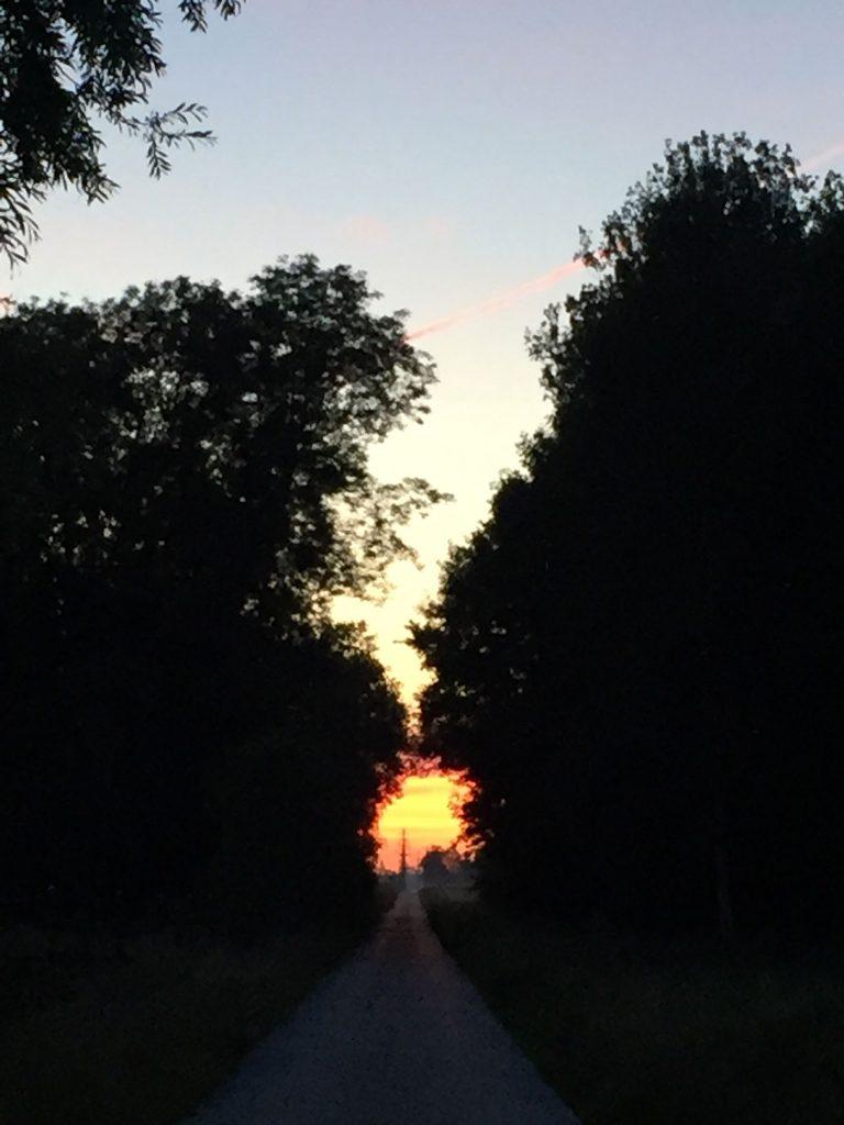 Solstice 5 heures - 2017